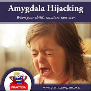 PB - Amygdala