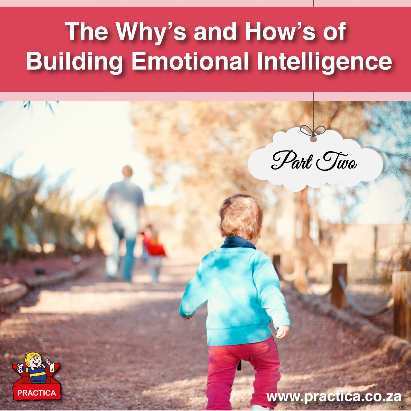 The Why's and How's of Building Emotional Intelligence - Part 2