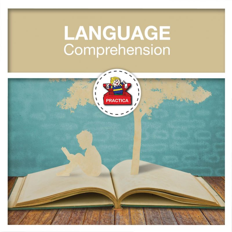 Practica - Language Comprehension